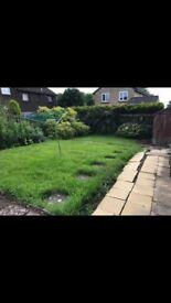 2 bedroom flat to rent in Coltness Wishaw