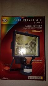 Security light with motion sensor