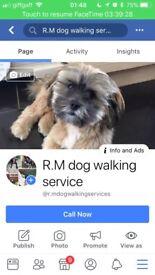 R.M dog walking service