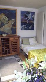 A lovely SINGLE ROOM in house in BATTERSEA SW11