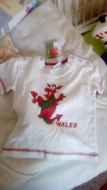 12-18 months red dragon t shirt