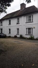 Charming one double bedroom flat with office/dining room/ small bedroom in Hawkhurst