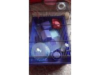 Hamster cage with accessories and exercise ball