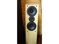 Acoustic Solution floor standing speakers