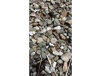 Free pea gravel