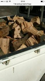 Pickup load of seasoned logs free delivery £75
