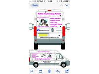 Mobile Dog Grooming Service