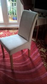 DINING CHAIRS WANTED