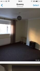 Central Flat for rent