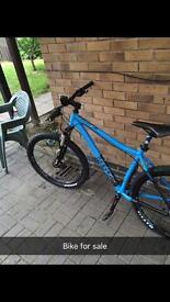 Voodoo mountain bike ( bargin )