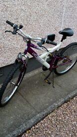 Ladies Mountain Bicycle