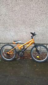 Bicycle, mountain bike, childs bike