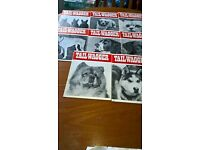 Vintage Tail- Wagger Dog Magazines