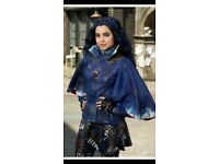 Evie from descendants dress up outfit bought from Disney channel, only worn twice.