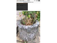Concrete log planter