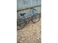 Retro Mountain Bike 26""