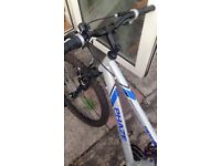 apollo phaze mountain bike