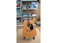 Accoustic guitar Bloomfield