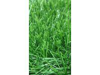 Artificial Grass 50mm