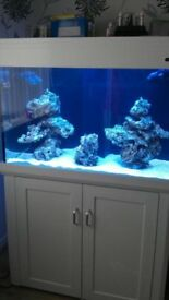 White Aqua one 300 marine reef tropical cold water fish tank Aquariums