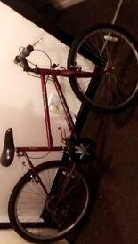 Raleigh redrock21speed bike