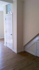 Painter, Plasterer Tiler, Flooring installer, carpenter in one team