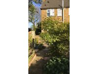 Council House, Over Hundred Years old, Semi Detached, Huge Rear Garden, Right to Buy.