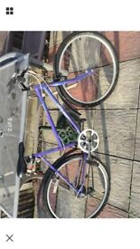 Raleigh calypso ladies bike