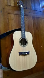 Peavey DW-1 Acoustic guitar, dreadnought. With bag and accessories