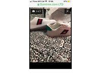 Gucci ace white trainers