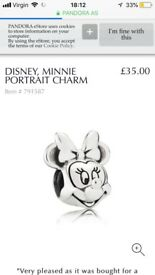 Beautiful Disney Pandora set, frozen bracelet, and to stamped charms