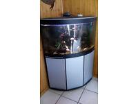 For sale: 190 litre Fluval corner fishtank