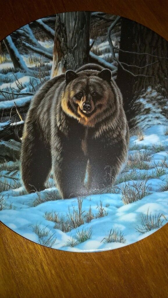 Grizzly Bear Collector Plate On Canadian Dominion China Excellent Mint Condition