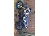 Pulse Adrenaline 125cc 4 Stroke 2012