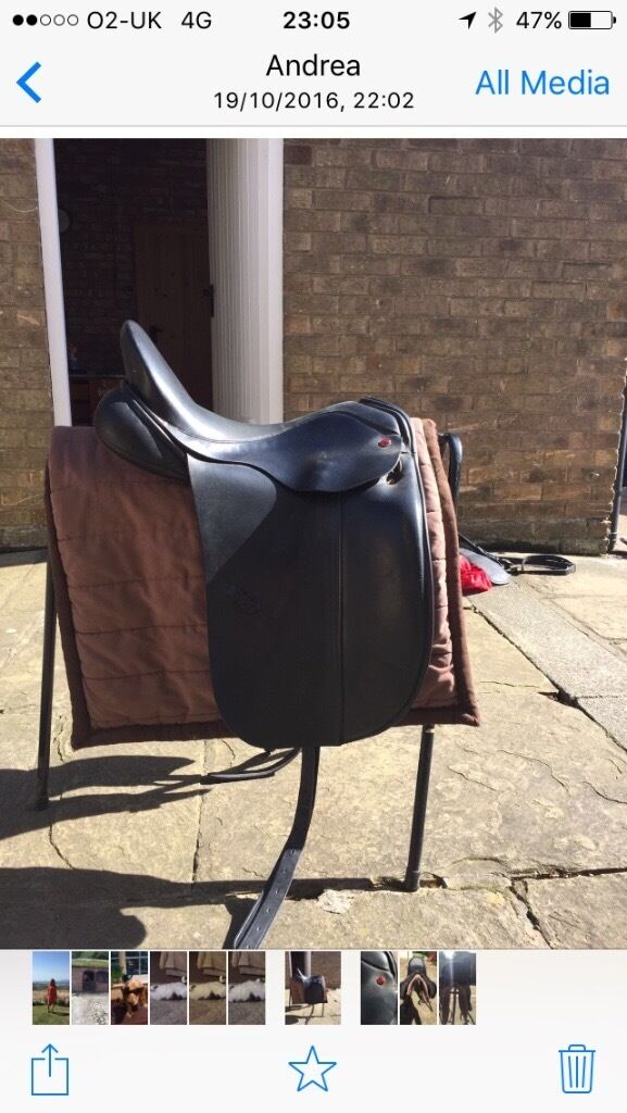 "Albion all dressage saddle 17.5""black"