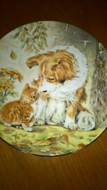 Kitten Encounters Puppy Pal Collectors Plate Royal Worcester China Mint Condition