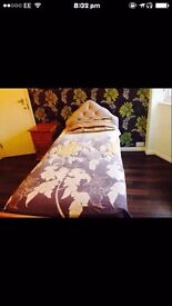 Beautiful Double and single room available