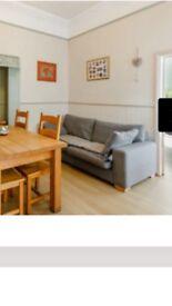 Gray sofa from Next