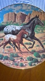Appaloosa Horse & Foal China Collector Plate Ltd Edition With Certificate & Box Excellent Condition