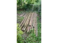 8' Wooden fencing stakes (X 15)