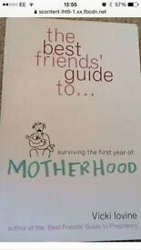 'The best friends guide to surviving the first year of motherhood' baby child parent