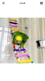 Parrot toys for sale