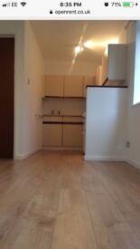 Burpham Aldi studio flat to rent in Guildford