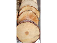 LOG SLICES: cut tree trunk rustic real wood slices for decoration or stepping stones