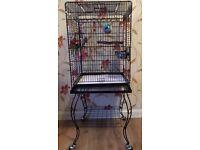 Reinforest bird cage