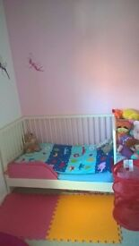 Cot- Toddler Bed