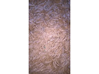 NEXT light brown rug.