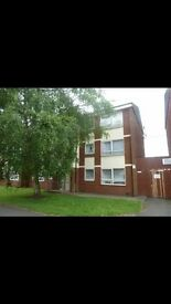 2 bed flat to let for rent Dillon court Nuneaton