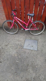 Giant bike would suit a small women or teenager just serviced £40