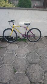 Like New Raleigh Mens Bike Unbeliavable Condition for age £50....